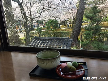 お花見 ~兼六園~_e0145332_20183983.jpg
