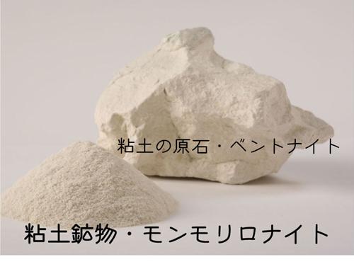 アースデイ東京2017 エコ雑貨スクール_f0105147_10321189.jpg