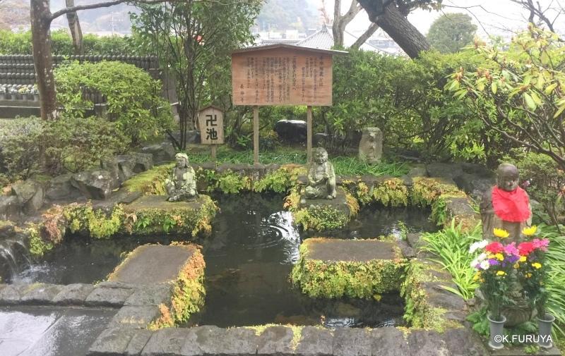 ☂ 雨の鎌倉散策 ☂  最終回 長谷寺_a0092659_18011063.jpg