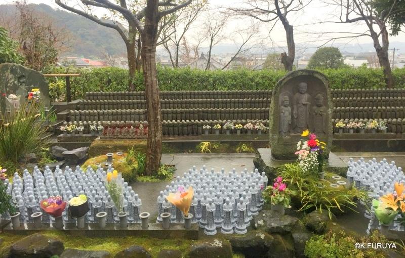 ☂ 雨の鎌倉散策 ☂  最終回 長谷寺_a0092659_18071393.jpg