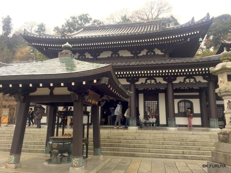☂ 雨の鎌倉散策 ☂  最終回 長谷寺_a0092659_18152412.jpg