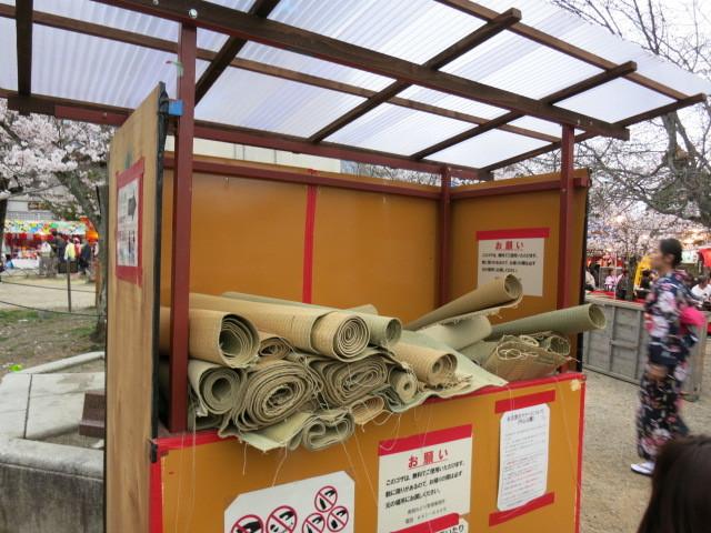 京都お花見 ③円山公園の枝垂れ桜 ・4月6日_f0236260_13530857.jpg