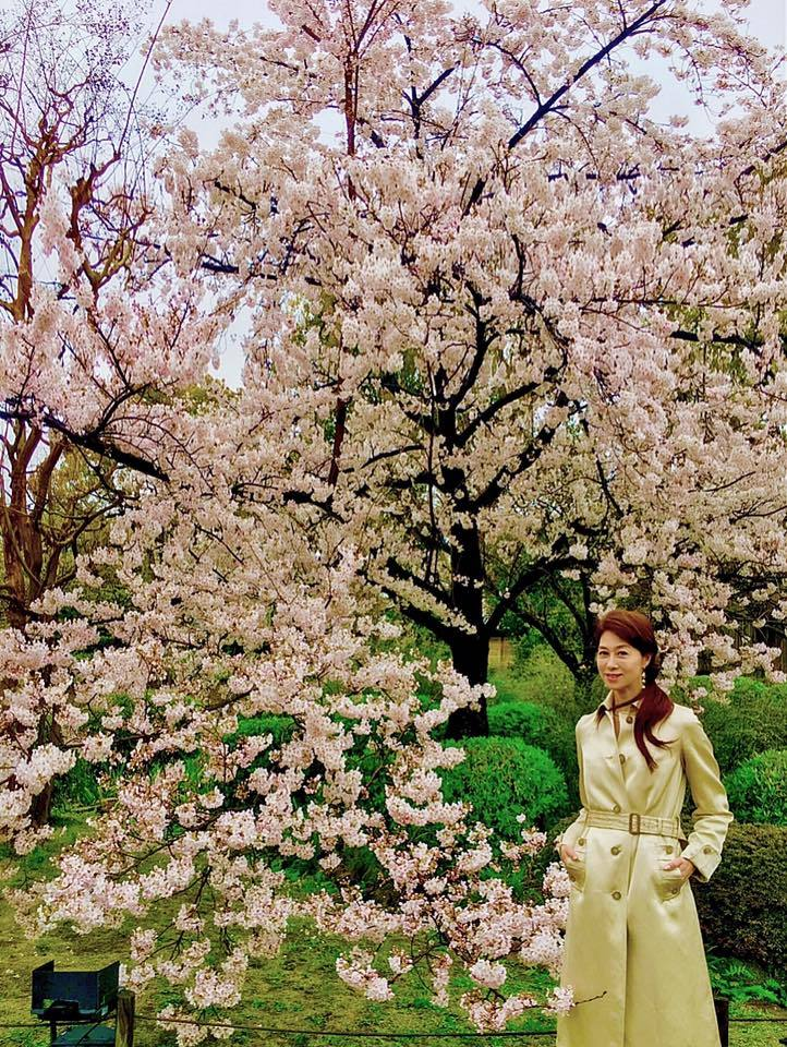 桜雨の東寺でお花見🎶_a0138976_16104647.jpg