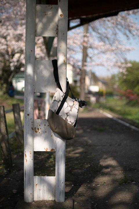 春爛漫の廃駅_d0353489_20321983.jpg