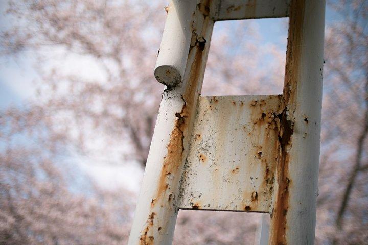 春爛漫の廃駅_d0353489_2046349.jpg