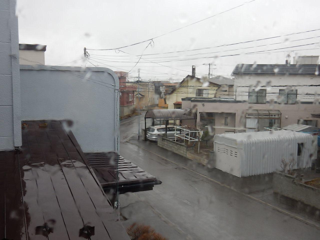 雨から雪へ 寒の戻り_c0025115_20321618.jpg