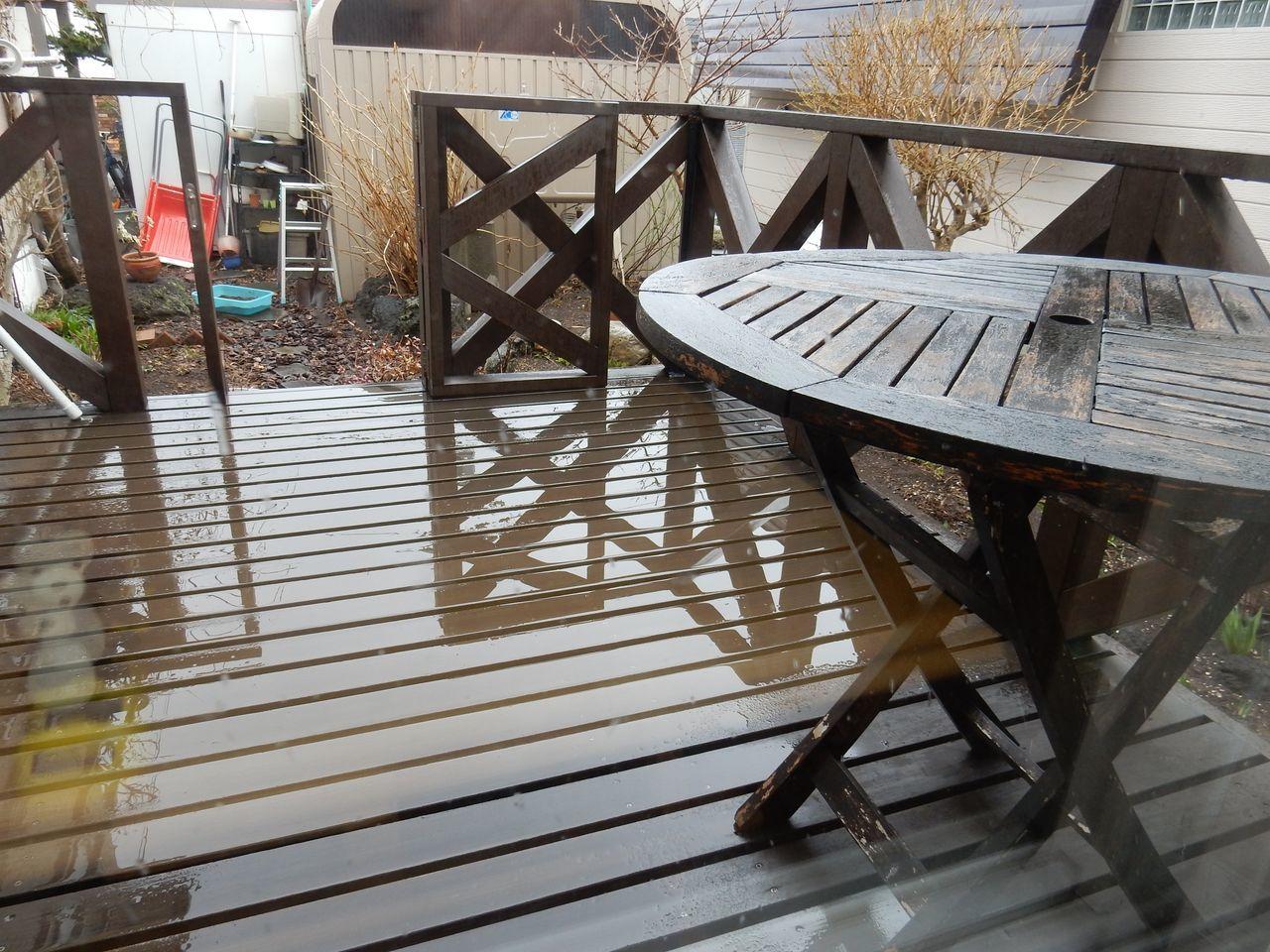 雨から雪へ 寒の戻り_c0025115_20322141.jpg