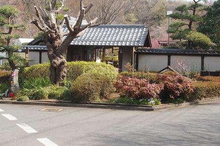 里山散歩_a0240026_2027473.jpg