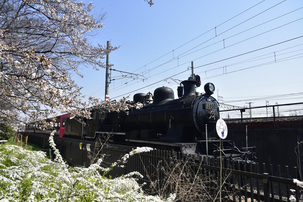 2017年春、京都、番外編_e0367330_22185267.jpg