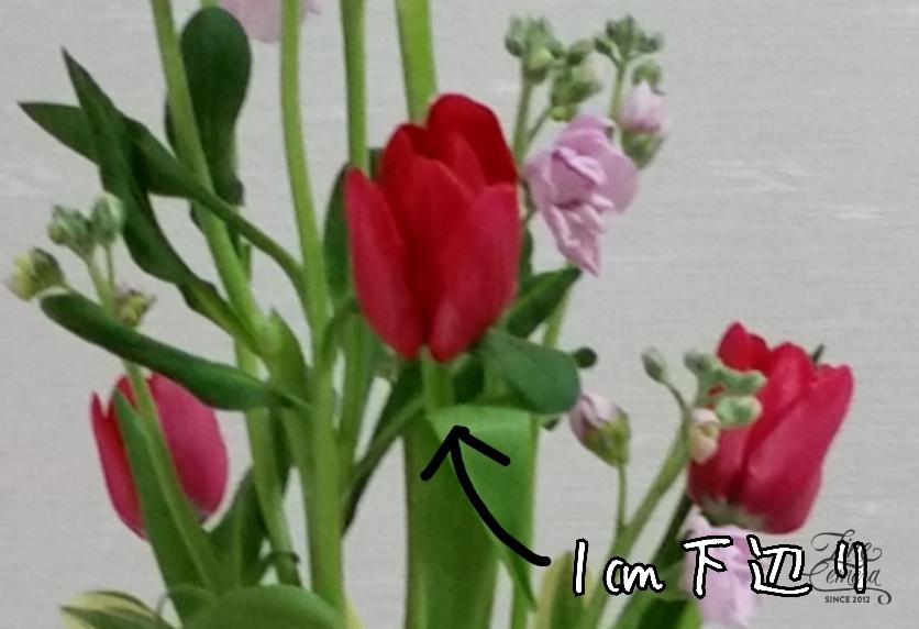 f0345143_16515745.jpg