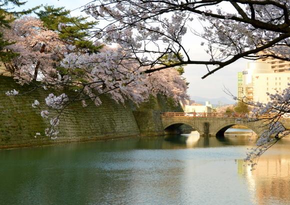 お堀の桜2017_c0306646_12151734.jpg