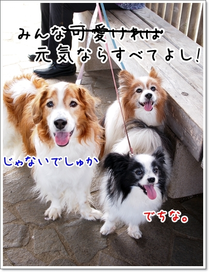 d0013149_22281654.jpg