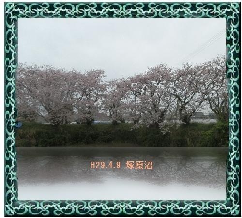 a0212557_10244.jpg