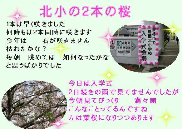 f0003174_12040225.jpg
