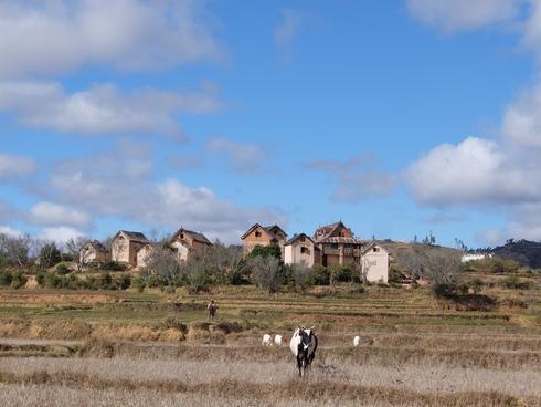 8日目: アンツィラベ ザフィマリニ村へ_a0207588_19573167.jpg