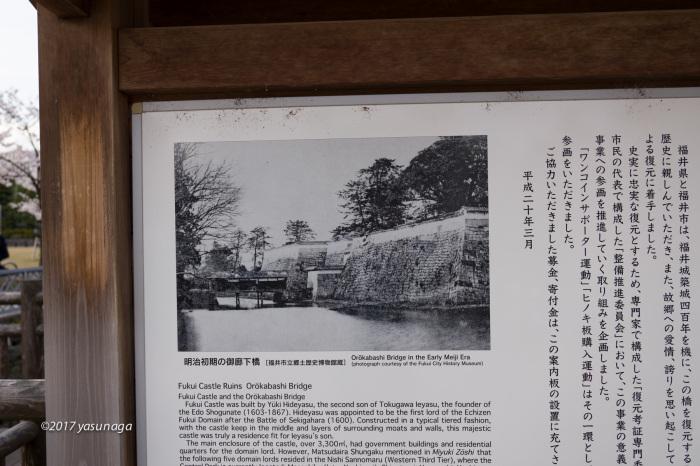 日曜日、市内を散歩。グリフィスと福井城_d0192712_19160994.jpg