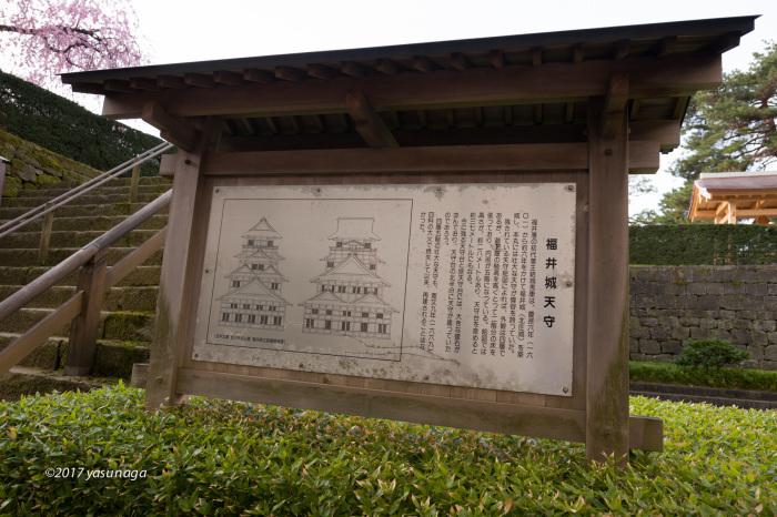 日曜日、市内を散歩。グリフィスと福井城_d0192712_19161497.jpg