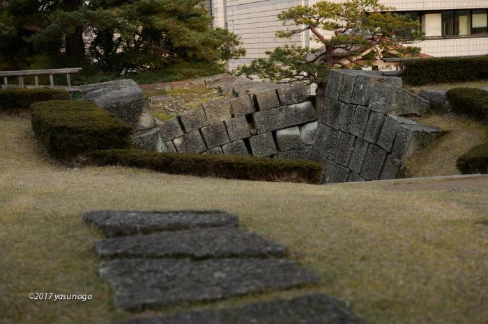 日曜日、市内を散歩。グリフィスと福井城_d0192712_19170191.jpg