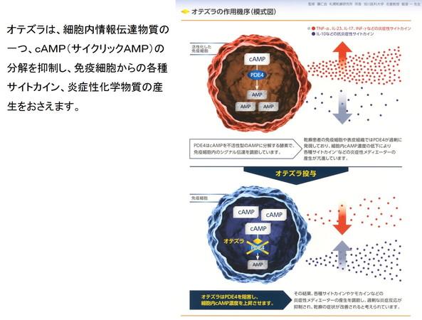 c0219616_16561072.jpg