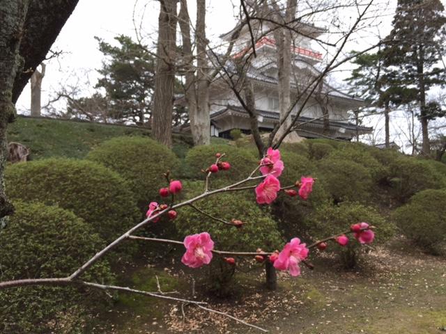 """2017年4月 『八甲田山、酸ヶ湯、そして秋田』 April 2017 \""""Tohoku\""""_c0219616_18412475.jpg"""