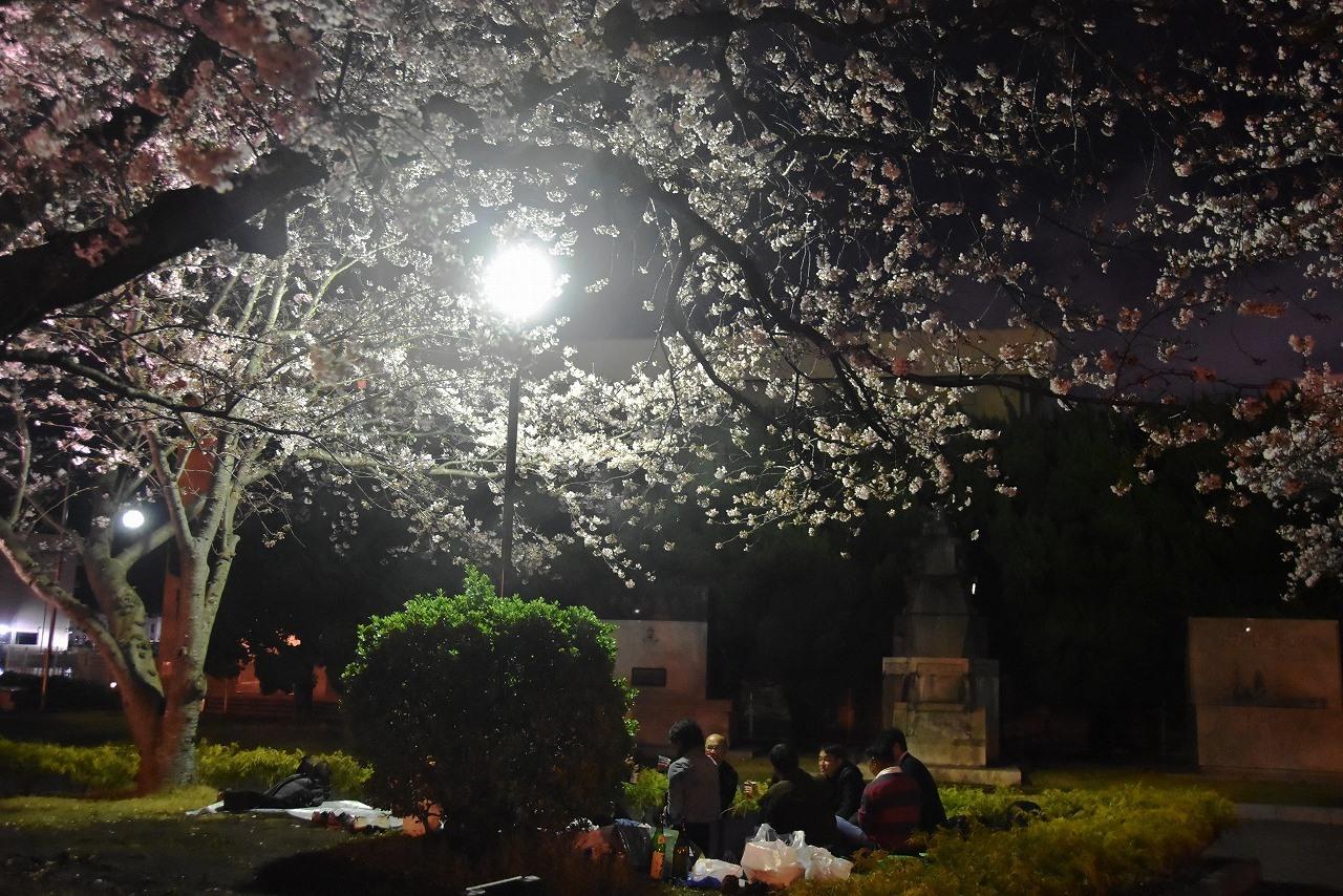 ヴェルニー公園の桜 6_d0065116_22471350.jpg