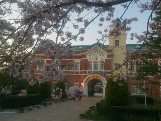 4月の女子会…桜♪_f0323446_23080967.jpg