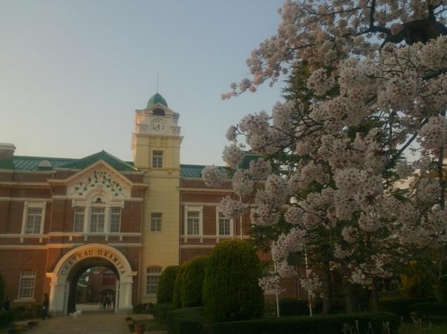 4月の女子会…桜♪_f0323446_23082819.jpg