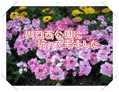 b0133748_22402474.jpg