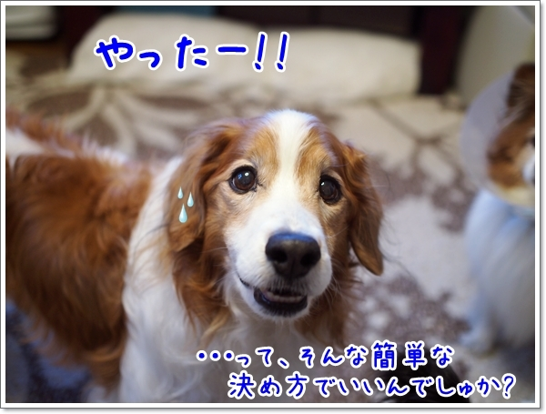 d0013149_13344889.jpg