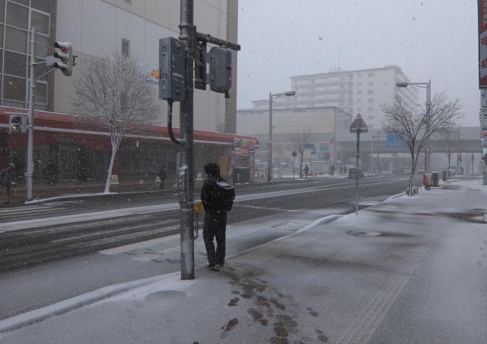 雨のち晴れ そして雪_e0213363_23325752.jpg