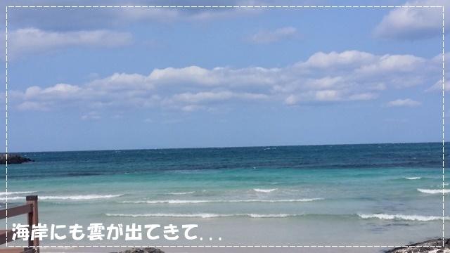 ♪ フリータイム ♪_a0115924_15103677.jpg