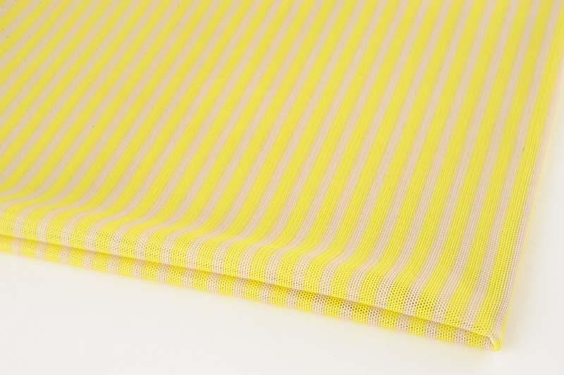 チュールのスカート Ⅱ_f0129726_19393610.jpg