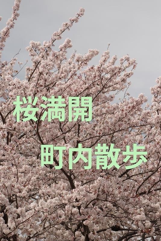 b0144049_10542526.jpg