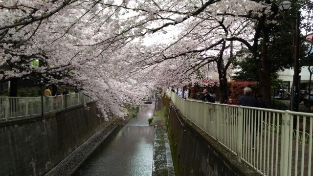 春の公演に向けて_e0173350_17485165.jpg