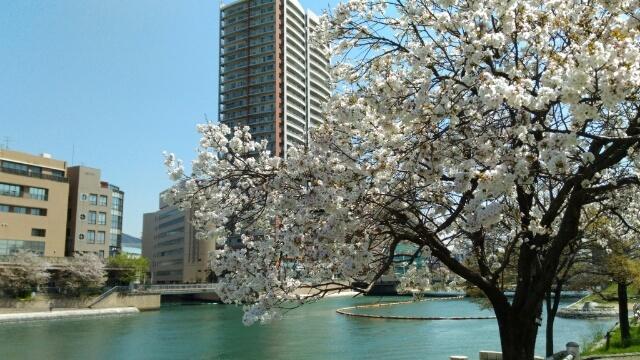 春の公演に向けて_e0173350_17492464.jpg