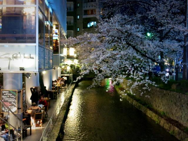 京都お花見 ⑤高瀬川沿いの桜*ライトアップ_f0236260_23362743.jpg