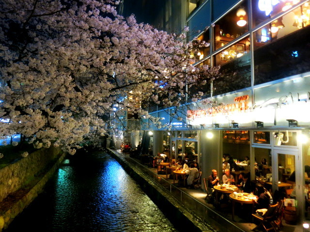 京都お花見 ⑤高瀬川沿いの桜*ライトアップ_f0236260_23533758.jpg