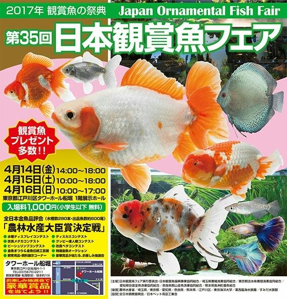 観賞魚フェア(2017)…vol.1_b0298605_22151761.jpg