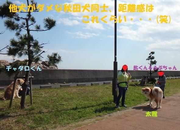 f0121712_15213604.jpg
