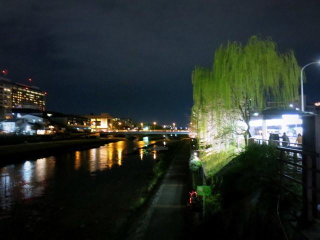 京都お花見 ⑤高瀬川沿いの桜*ライトアップ_f0236260_00055961.jpg