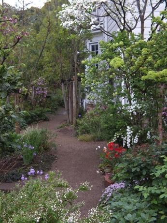 庭に夢中です!_b0214473_19232279.jpg
