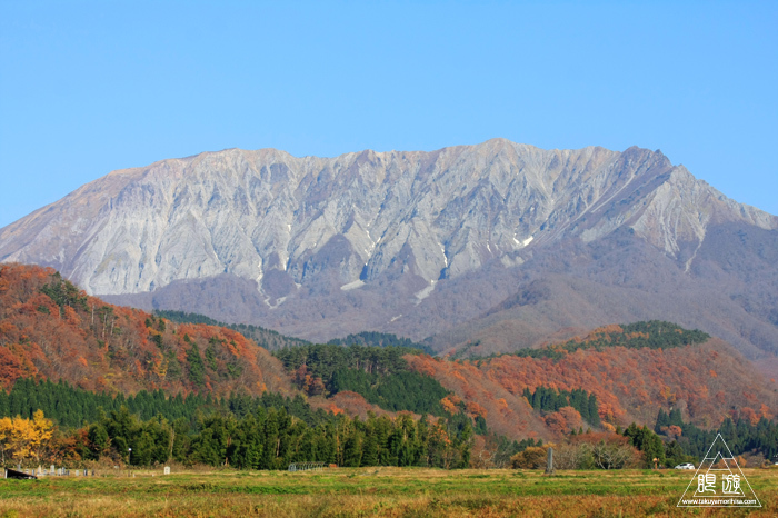550 大山 ~オシドリの大群激写~_c0211532_16590155.jpg