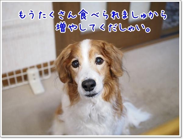 d0013149_22395071.jpg