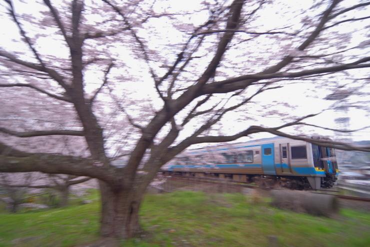 d0360256_20102652.jpg