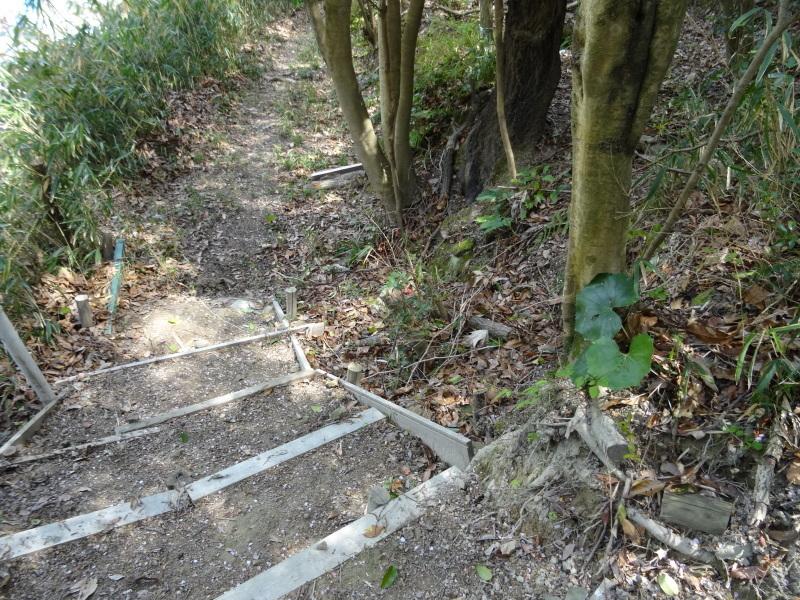 作業小屋作りは完成間近・・・うみべの森_c0108460_20353160.jpg