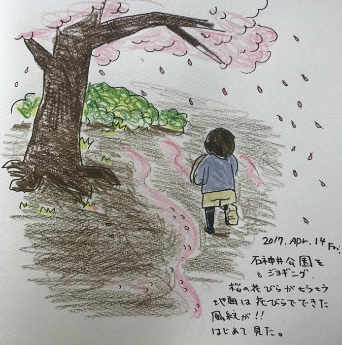 桜花びら風紋_f0072976_19264456.jpg