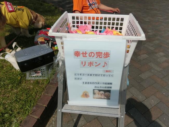 第8回糸島三都110キロウォークの完歩報告_e0294183_18043868.jpg