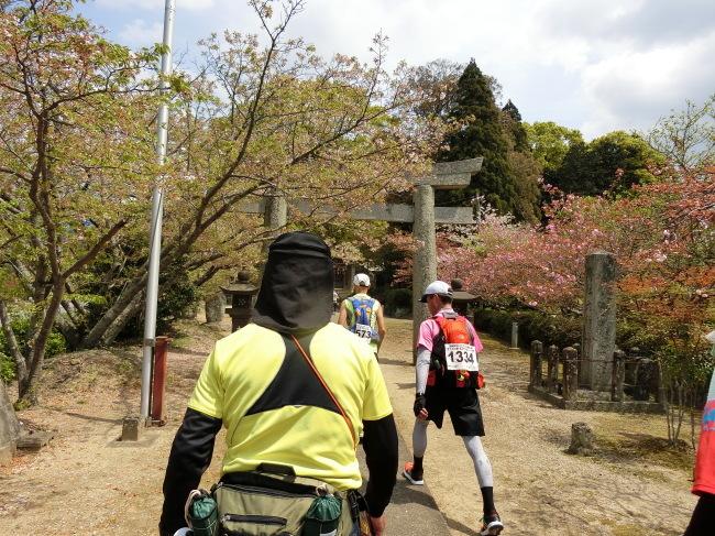 第8回糸島三都110キロウォークの完歩報告_e0294183_18193029.jpg