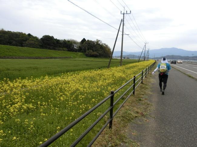 第8回糸島三都110キロウォークの完歩報告_e0294183_18303716.jpg