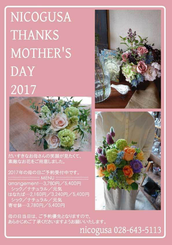 nicogusa THANKS MOTHER\'S DAY 2017_c0069389_17334484.jpg